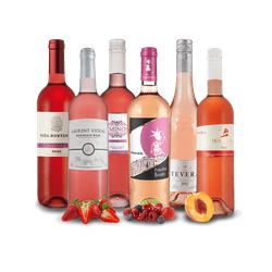 Probierpaket für Rosé-Genießer