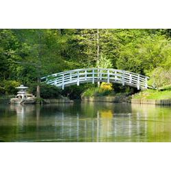 Fototapete Japanese Zen Garden, glatt 4 m x 2,60 m