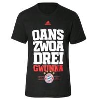 adidas FC Bayern München Kinder T-Shirt Triple Sieger 2012/2013 schwarz Gr. 164