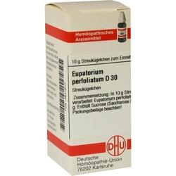 EUPATORIUM PERFOLIATUM D 30 Globuli 10 g
