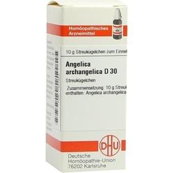 ANGELICA ARCHANGELICA D 30 Globuli 10 g