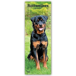 Rottweilers - Rottweiler 2021