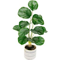 Kunstpflanze Lennja Korbmarante, andas, Höhe 58 cm, im Keramiktopf