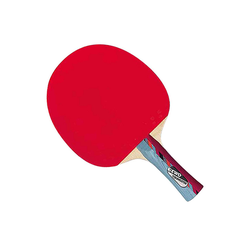 Gewo Tischtennisschläger Gewo Youngster mit gebrauchten Belägen Griffform-konkav