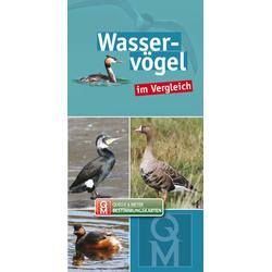 Wasservögel im Vergleich