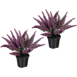 Künstliche Zimmerpflanze Erikabusch Erikabusch, Creativ green, Höhe 26 cm, 2er Set lila