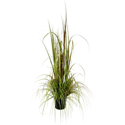 Kunstpflanze Gras im Topf Gras, I.GE.A., Höhe 150 cm bunt