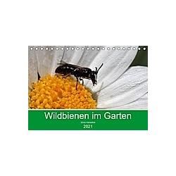 Wildbienen im Garten (Tischkalender 2021 DIN A5 quer)