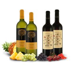 Probierpaket Cantine Colosi in Weiß und Rot mit je 2 Flaschen