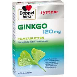 Doppelherz system GINKGO 120mg