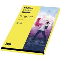 Inapa tecno Drucker- und Kopierpapier Rainbow, Intensivfarben, Format DIN A4, 80 g/m², Kleinpack gelb