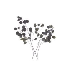 Kunstpflanze Eukalyptus, VBS, 35 g grün