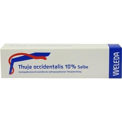 THUJA OCCIDENTALIS 10% Salbe 25 g