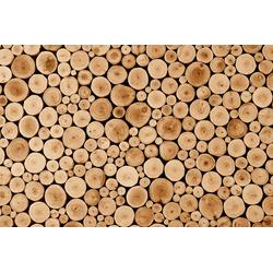 Fototapete Round Teak Wood, glatt 3 m x 2,23 m
