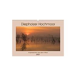 Diepholzer Hochmoor (Wandkalender 2021 DIN A3 quer)