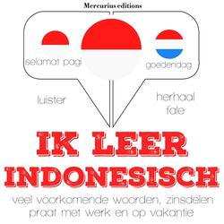 Ik leer Indonesisch als Hörbuch Download von JM Gardner