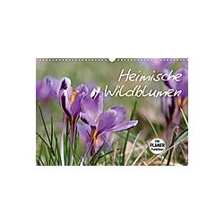Heimische Wildblumen (Wandkalender 2021 DIN A3 quer)