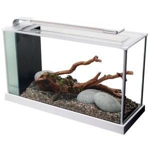 FLUVAL Aquarium Nano-Aquarium Spec 5, 19 Liter, BxTxH: 52x19x30 cm, weiß weiß