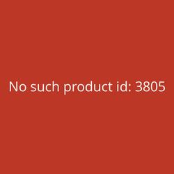 Sindoh DP200 Single 3D-Drucker