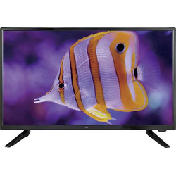JayTech Enterprise 2.4 LED-TV 62cm 24.5 Zoll EEK A (A++ - E) DVB-T2,DVB-C,DVB-S,Full HD,CI+ Schwarz