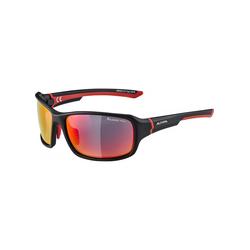 Sonnenbrille Alpina Lyron Polarized