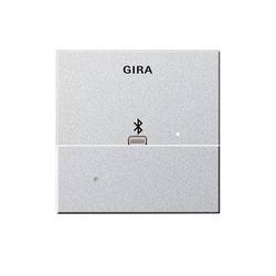 Gira Dockingstation Apple 228726