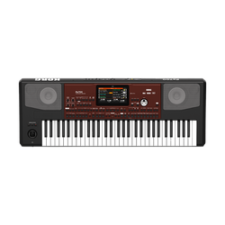 Korg Pa700 Portable Keyboard