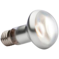 Exo Terra EX Tight Beam Tageslichtlampe Spezialleuchtmittel, E27, Tageslichtweiß, 50 Watt