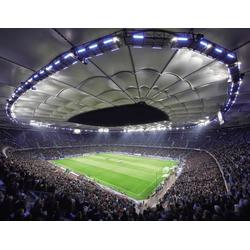 Vliestapete Hamburger SV im Stadion bei Nacht bunt Fototapeten Tapeten Bauen Renovieren