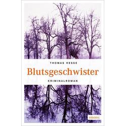 Blutsgeschwister als Buch von Thomas Hesse