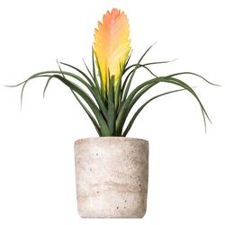Kunstpflanze Tillandsie Soledo, Creativ green, Höhe 29 cm gelb