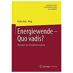 Energiewende - Quo vadis? - Buch