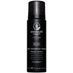 Paul Mitchell Awapuhi Wild Ginger Dry Shampoo Foam 70 ml