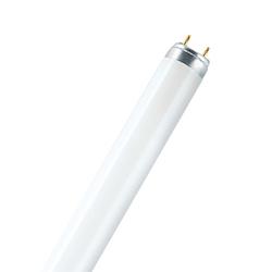 Osram L 18 W/950 daylight - EEK: B