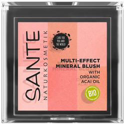 Sante Teint Make-up Rouge 8g