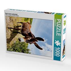 Esel in der Landschaft Lege-Größe 48 x 64 cm Foto-Puzzle Bild von Wolfgang Steiner Puzzle