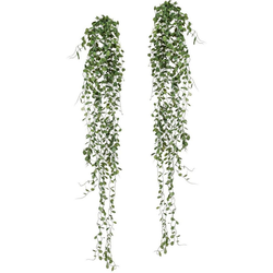 Kunstranke Mühlenbeckia-Hänger Mühlenbeckia, Creativ green, Höhe 80 cm, 2er Set