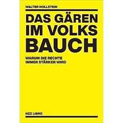 Das Gären im Volksbauch. Walter Hollstein  - Buch