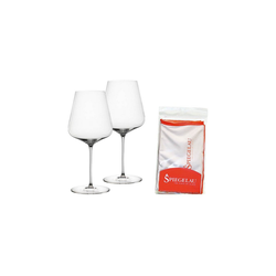 SPIEGELAU Rotweinglas Definition Bordeauxglas 2er Set mit Poliertuch, Glas