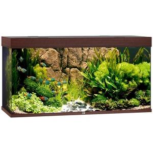 JUWEL AQUARIEN Aquarium Rio 350 LED, 350 Liter, BxTxH: 121x51x66 cm braun