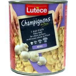 Lutece Champignon-Köpfe aus Paris, 1. Wahl, mini (800g)