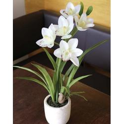 Kunstpflanze ORCHIDEE weiß (H 51 cm)