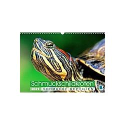 Schmuckschildkröten: Schmucke Reptilien (Wandkalender 2021 DIN A3 quer)