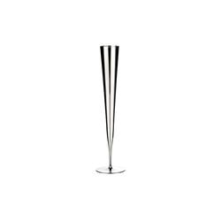 ZIEHER Champagnerglas Champagnerflöte Vaganza PLATIN im 2er Set, Glas