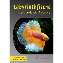 Labyrinthfische als Buch von Horst Linke