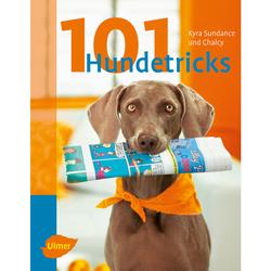 Ulmer 101 Hundetricks von Kyra Sundance und Chalcy