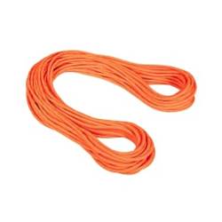 Mammut - 9.5 Alpine Dry Rope  - Kletterseile - Größe: 60 m