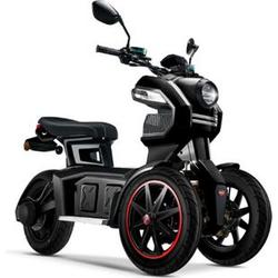 Doohan eGo2 Dreirad Elektroroller 1560W - 45km/h, schwarz