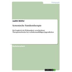 Systemische Familientherapie: eBook von Judith Wölfel