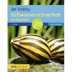 Süßwasserschnecken im Aquarium als Buch von Ingrid Haunreiter
